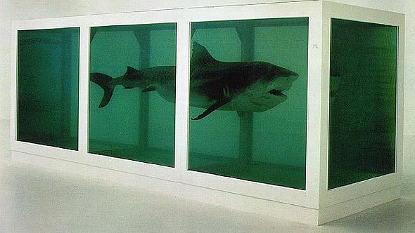 dead-shark