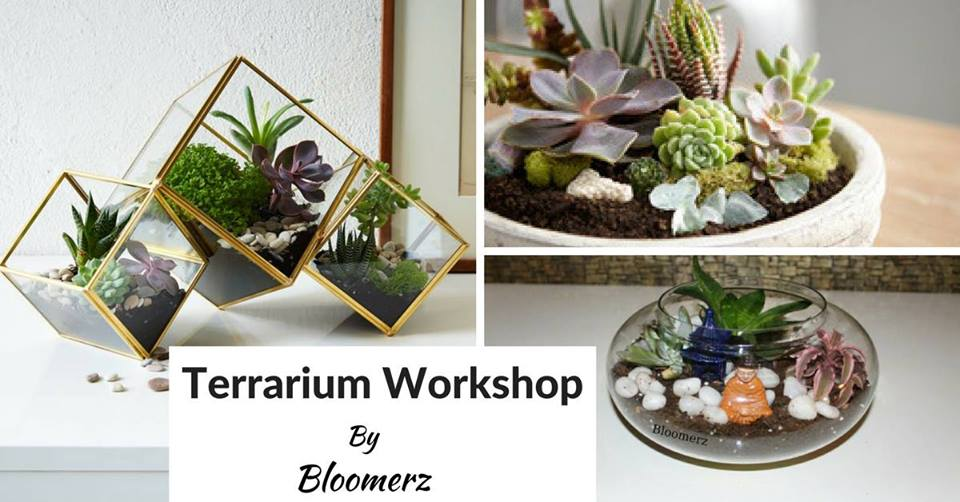 terranium workshop