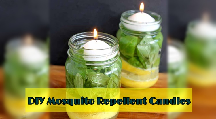 mosquito-repellent-candles
